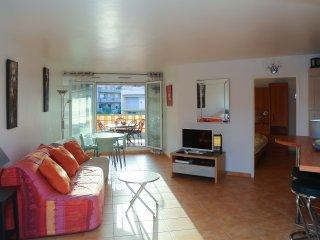 Grand T2 centre ville calme confort espace climatisation garage terrasse WC sepa