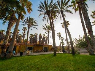 Hoya del Pozo un lugar unico rodeado de palmeras con acceso directo a la playa
