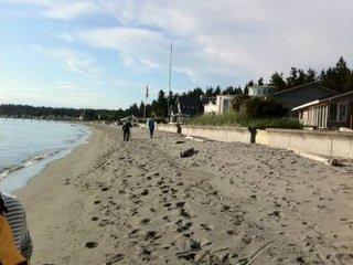 260 - Luxurious Beach Estate ~ RA165452