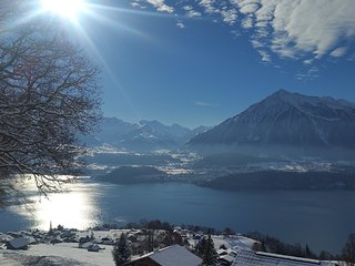 Authentic Swiss Chalet with Splendid Alps & Lake View