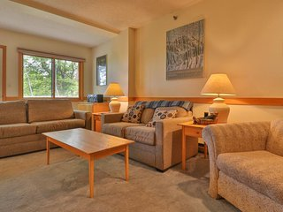 Dog-friendly, slopeside condo w/ access to skiing, shared pool, and hot tub!