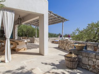Villa Zitetta, enclosed within a private land with olive trees, 500 m to the sea