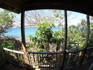 Sea Grape Ocean View