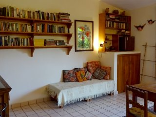 Anacahuite Tamarindo Room Rental La Ropa
