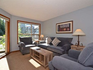 Living room with Queen Sofa, Gas fireplace and access to deck