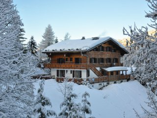 Wessex - 4 bedrooms, log fire, sauna, sleeps up to 10, ski back, great value