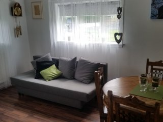 Easy Iceland Apartments - Basement Suite in central Selfoss