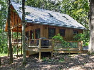 Romantic Asheville Area Cabin w/ Hot Tub on Farm!