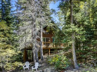 NEW! Renovated 3BR Dumont Cabin w/ Deck & Grill!