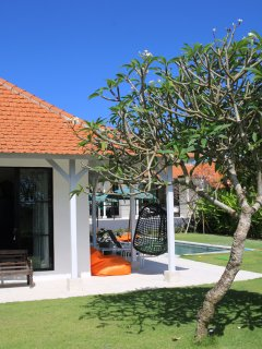 Large Frangipani Trees with beautiful flowers are set in the garden