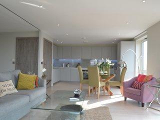 Luxurious 2BR flat in Battersea!