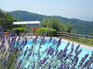 Luxury Tuscan Villa b/w Florence&Pisa, Air/Cond,Large Pool,great views, max 15pp