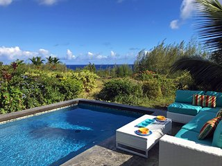 Gardens by the Sea: Ocean view home with POOL, private yard, tropical gardens