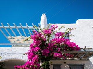 Spiti Georgia  (Georgia's House) - Dryos, Golden Beach. Paros Island. AMA 14039