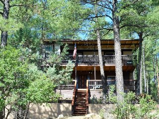 Rustic Cabin w/ WiFi, Fireplace, Grill, Big Screen TV & Conservation Views