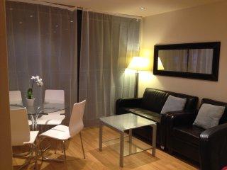 Cosy Excecutive Apartment at Newcastle City Centre