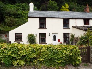 1 YEW TREE COTTAGES, double bedrooms, garden with patio, near Lydbrook, Ref. 963