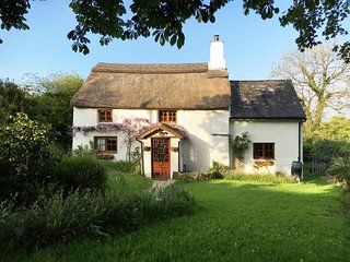 DAMSON COTTAGE, beautiful thatch cottage, woodburner, sunny conservatory, large