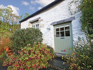 THE LONG BARN, barn conversion, walking distance to Swanpool Beach, cosy wood