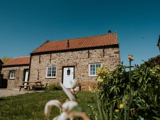 THE BOTHY first-class cottage, village location, en-suite, woodburning stove, Wi
