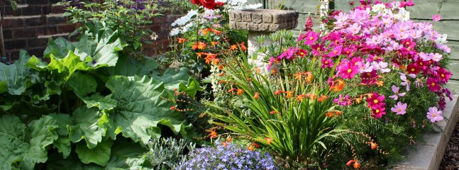 Our colourful enclosed garden, accessible via the French doors in the lounge. Lots of seating.