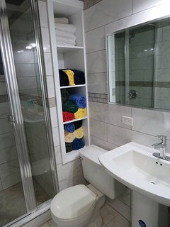 Guest Hall Bathroom with shower.