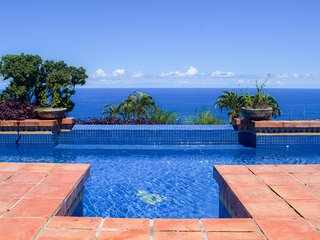 Kailani Villa: 6.5 Acre Estate, Oceanviews, Infinity Pool, 20min to Hilo