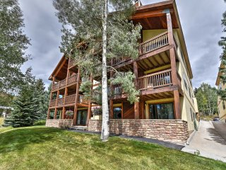 Cozy Mt. Crested Butte Condo - Walk to Ski Base!