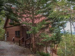 WIT`S END - 3BR/3BA LUXURY HOME WITH LONG RANGE MOUNTAIN VIEWS , GAS LOG