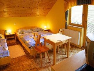 Guest House Kovše Kočnik - Hidden Forest Room