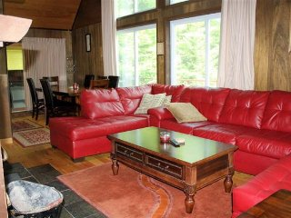 Spacious Clean and Updated Swiss Chalet Near Mount Snow