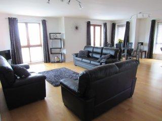 Luxury open planned living area