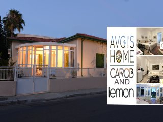 CAROB & LEMON Combination Apartments at AVGI'S HOME - Limassol