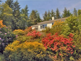 Ardamurchan Woodland Cottage - New listing for 2018 Bookings for Wildlife Lovers