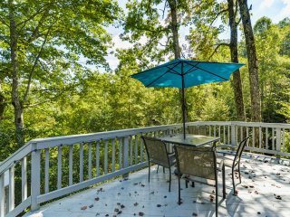 'Muir Woods' Pisgah Forest Apt w/Serene Mtn Views!