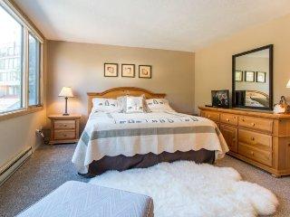 Montezuma Condominium 1758 - Spacious, easy access to Keystone Conference Center