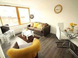 Diamond - Britannia Chambers Apartment 4