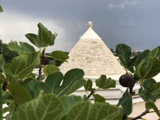 Trullo Falco New for 2018. Luxury villa-pool,WiFi. Discounted rates 1st year.