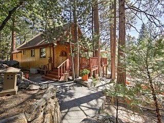 NEW! Cozy Cabin - Explore San Bernardino Mountains