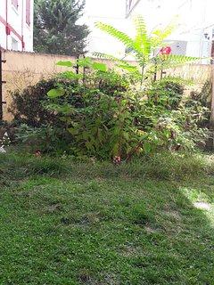 Jardin privatif que pour vous ...