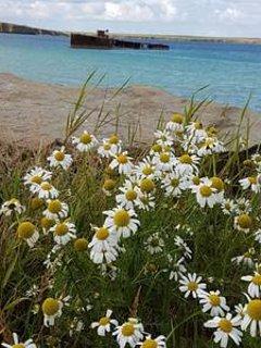 Inganess Beach
