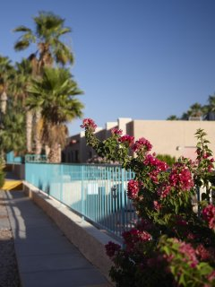 Havasu Dunes Resort property