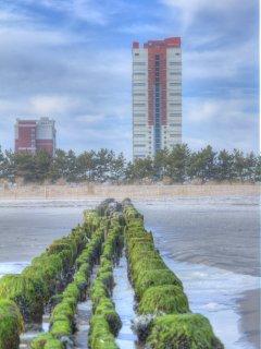Wyndham Skyline Tower beach