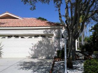 Sarasota 19
