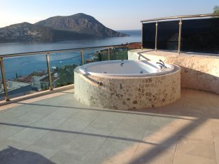 Jacuzzi has Hot and Cold water and shower head, it is has separate power side and bottom bubble jets