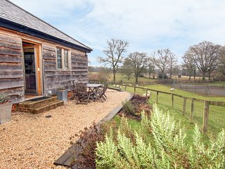 THE OLD CART SHED, close to New Forest, near Rockbourne, tennis court, Ref 96794