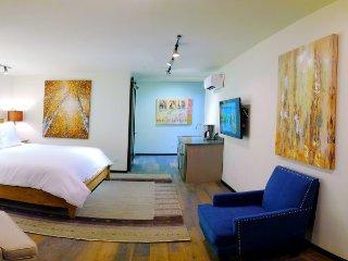 The Lincoln 304-1 Bed, 1 Bath Loft Studio