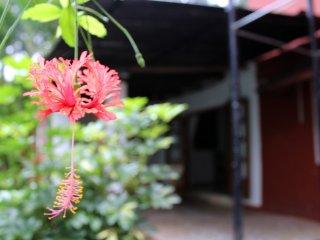 3BHK Portuguese Villa with Private BAR, Villa de Arte