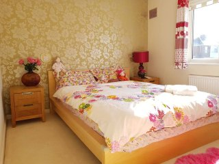 Entire, spacious and bright semi detached house