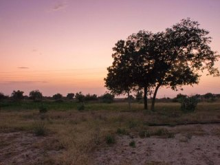 Farmstay in Jaisalmer